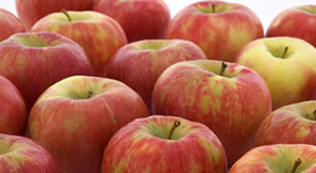 Buy Honeycrisp Apples